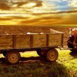 Corso finalizzato all'acquisizione di conoscenze e competenze professionali nell'ambito della gestione di una impresa agricola