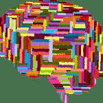 Psicologia Organizzativa, delle Istituzioni e dei Gruppi