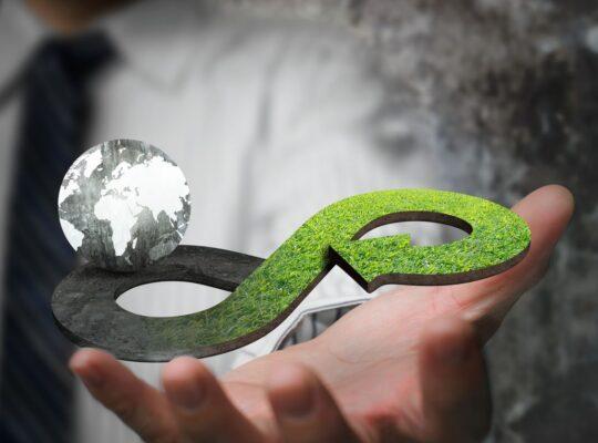 Business Administration per l'economia circolare e la green economy