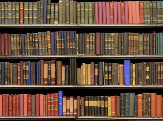 Principi storico-filosofici del diritto