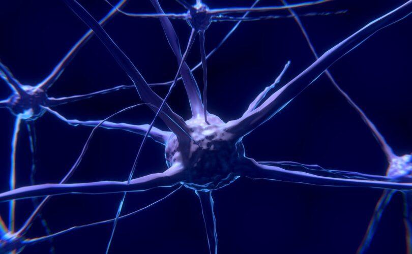 Terapia endovenosa ed accessi vascolari (In collaborazione con IRCCS Neuromed)