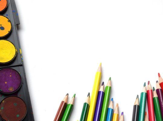 L'insegnante di scuola primaria: competenze pedagogico-didattiche.