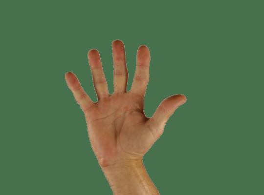 Lingua dei segni italiana: ruolo, funzione e applicazione – Ambito didattico educativo - professionale