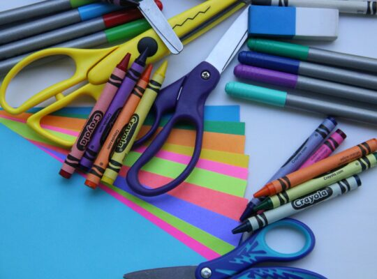 L'insegnante di scuola dell'infanzia: competenze pedagogico-didattiche