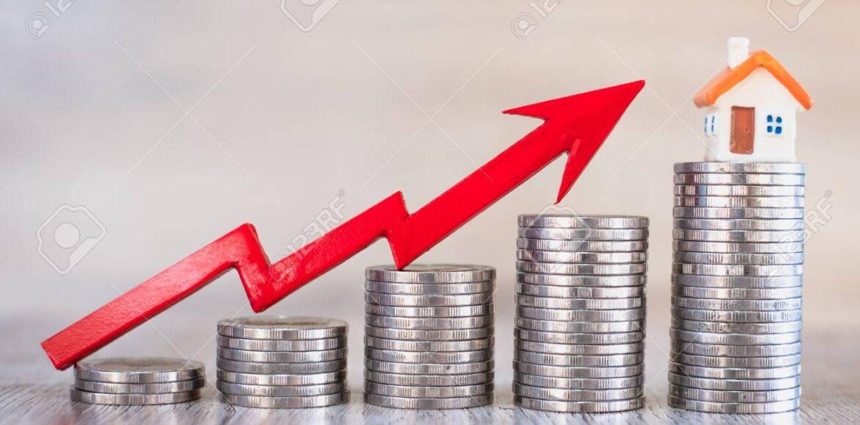 Real Estate Management & Finance
